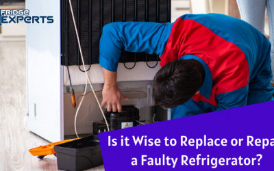 Is it Wise to Replace or Repair a Faulty Refrigerator?