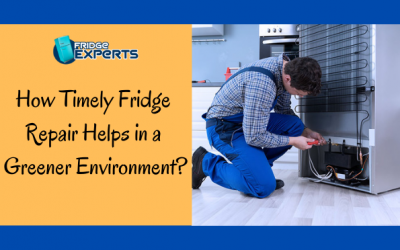 How Timely Fridge Repair Helps in a Greener Environment?