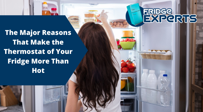 The Major Reasons That Make the Thermostat of Your Fridge More Than Hot