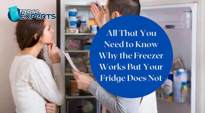 All That You Need to Know Why the Freezer Works But Your Fridge Does Not