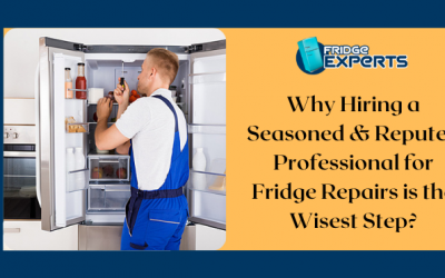 Why Hiring a Seasoned & Reputed Professional for Fridge Repairs is the Wisest Step?