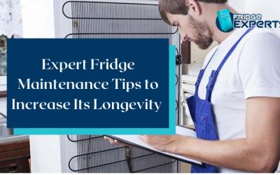 Expert Fridge Maintenance Tips to Increase Its Longevity