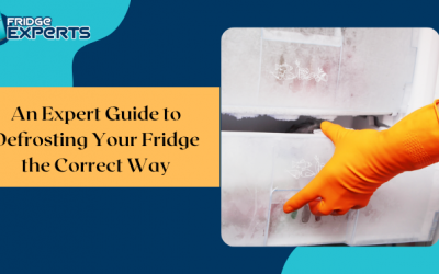 An Expert Guide to Defrosting Your Fridge the Correct Way